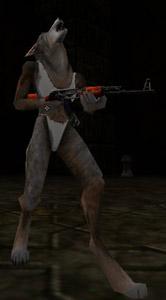 fwwolf-3